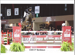 stoulone CSI5* bordeaux